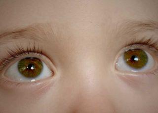 Toviy's Eyes
